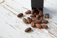 cocoa-bean-1282878__340