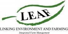 LEAF-300x151