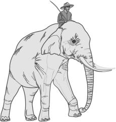 elephant_with_rider