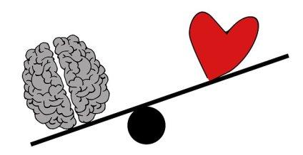 brain-2146167__340